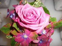 Grossansicht in neuem Fenster: Blumen Schöner