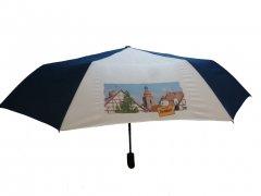 Grossansicht in neuem Fenster: Schirm